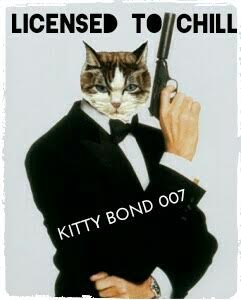 Licensed to Chill Kitty Bond