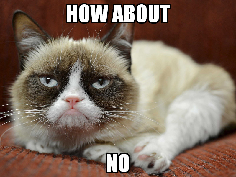 Grumpy Cat How About No