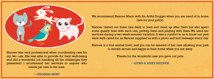 Reviews by happy cat sitting clients
